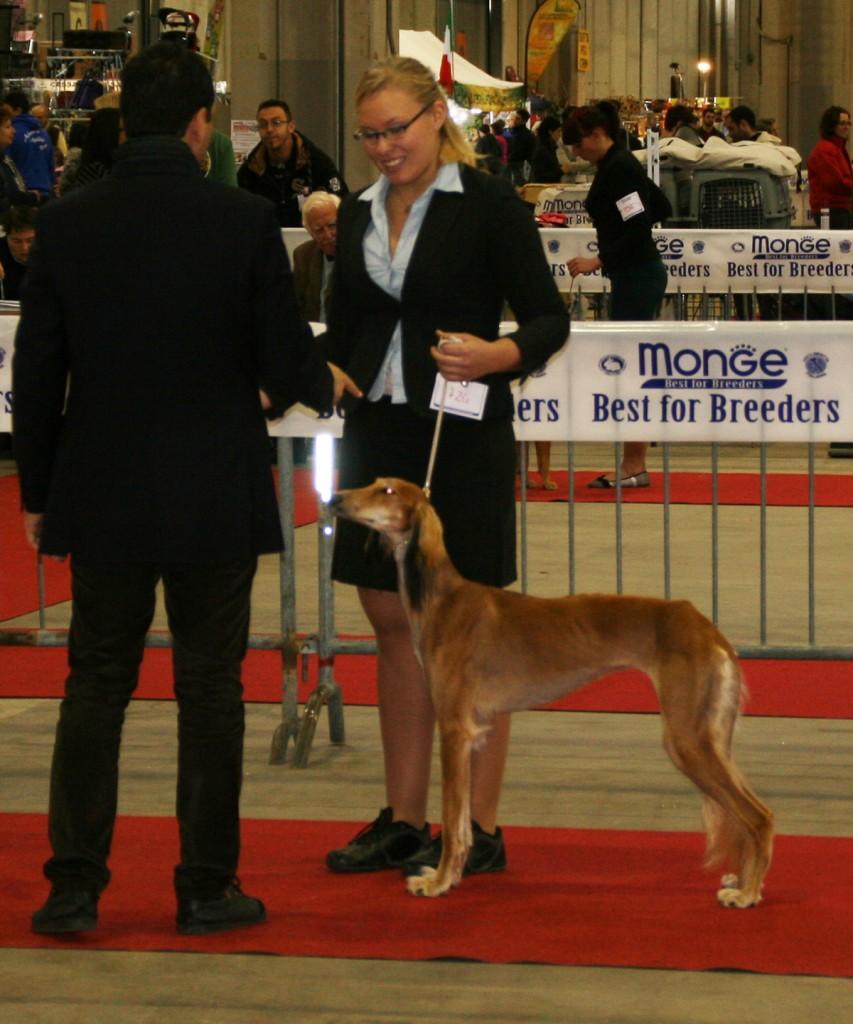 1.12.2012 CAC BELLUNO