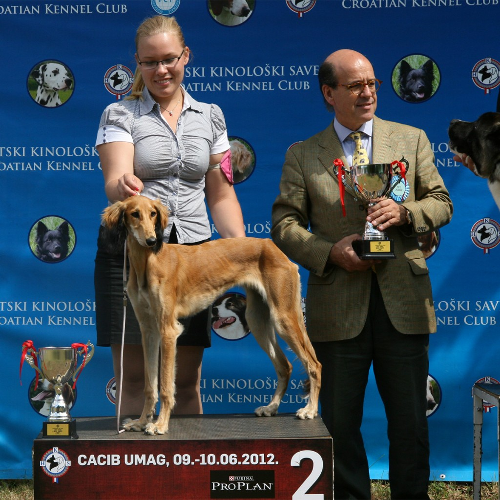 10.6.2012 CACIB           UMAG       BEST PUPPY 2nd place