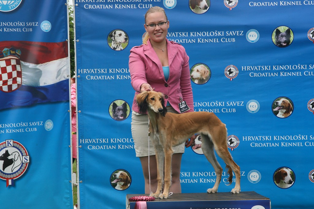 26.5.2012 CACIB    VARAŽDIN     BEST BABY 2nd place